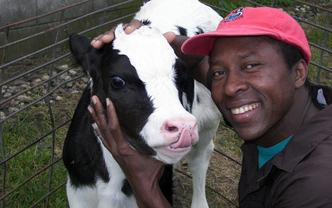 How Can I Bring in a Foreign Dairy Employee to the USA?