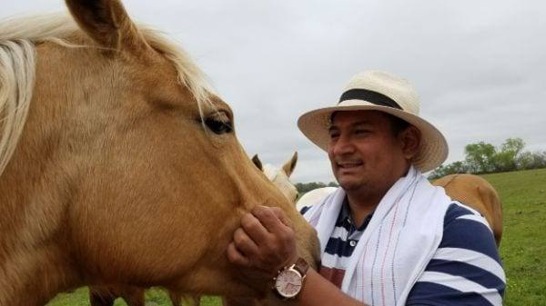 horse colombian